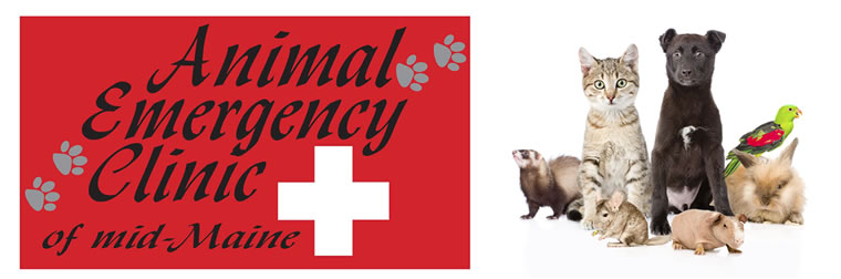 Animal Emergency Clinic Mid-Maind