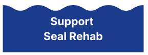 Support Seal Rehab Button